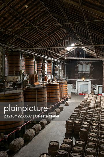 Barrels in winery cellar - p1216m2260537 by Céleste Manet