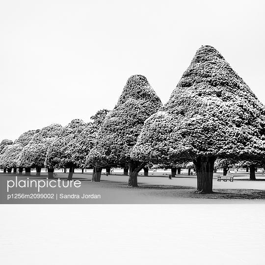 Hampton Court Palace - p1256m2099002 von Sandra Jordan