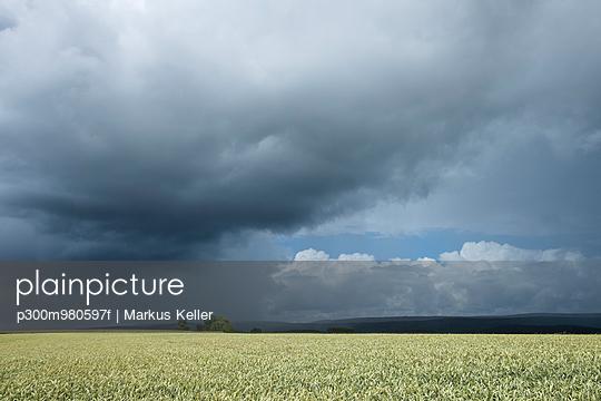 p300m980597f von Markus Keller