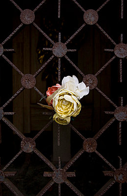 mausoleum mit plastikblumen - p627m671107 by Hendrik Rauch