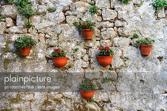 p1100m1497906 von Mint Images