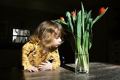Little two year old girl and her tulips. - p1166m2162814 by Cavan Images