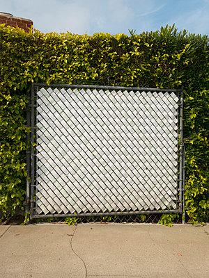 Zaun in der Hecke - p930m814837 von Phillip Gätz
