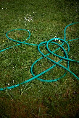 Gardening - p1028m1563585 von Jean Marmeisse