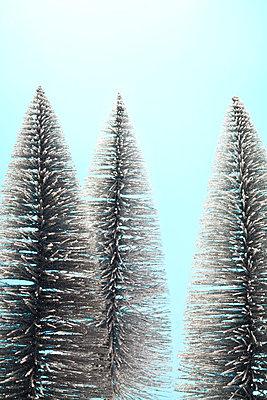 Wald - p1043m1225362 von Ralf Grossek