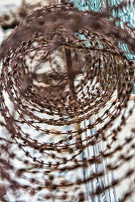 Close up of a rusty spiral razor wire  - p794m1590955 by Mohamad Itani