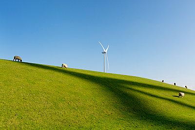 Energy Eemshaven - p1132m949270 by Mischa Keijser