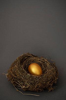 Ei im Nest - p1156m2087697 von miep