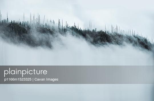 p1166m1523325 von Cavan Images