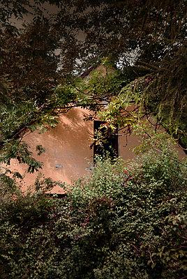 Hidden house - p1038m931552 by BlueHouseProject