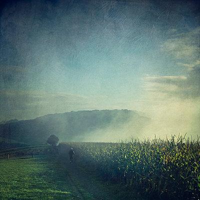 Jogger running in misty landscape at sunrise - p300m948908 by Dirk Wüstenhagen