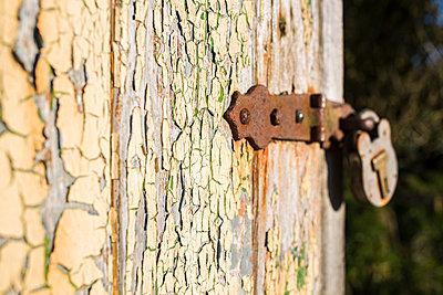 Alte Holzhütte - p1057m982787 von Stephen Shepherd