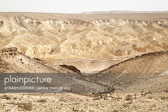 Israel, Wüste - p1643m2229366 von janice mersiovsky