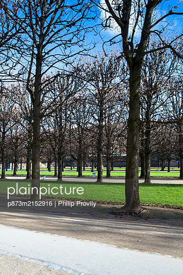 Paris, Jardin du Luxembourg - p873m2152916 by Philip Provily