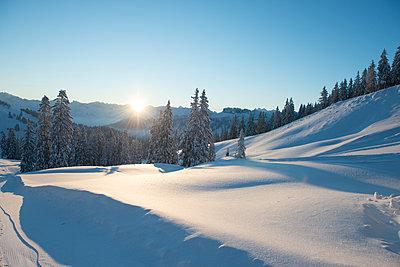 Winterlandschaft - p1142m1496423 von Runar Lind