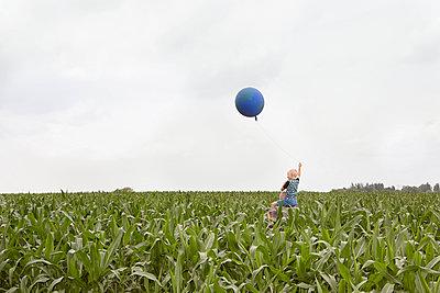 Sweet corn field - p294m1069499 by Paolo