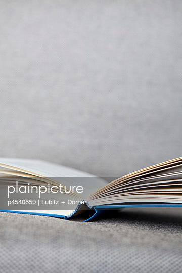 Book on a sofa - p4540859 by Lubitz + Dorner
