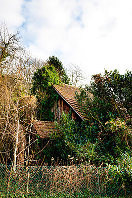 Old barn - p248m880993 by BY
