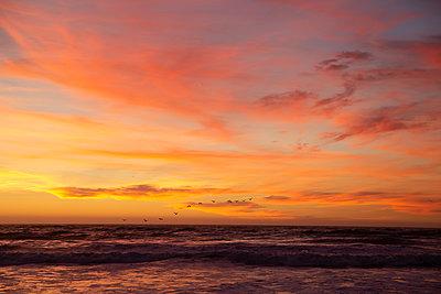 Coastline at sunset, California - p756m2211541 by Bénédicte Lassalle