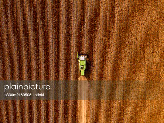 Aerial view of combine harvester on a field of soybean - p300m2189508 by oticki