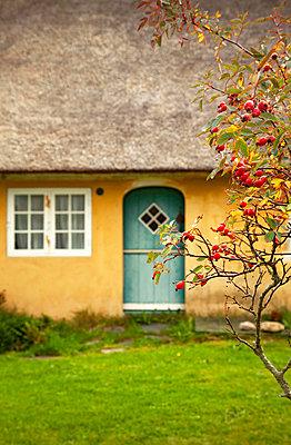 Old farmhouse on Fanö - p382m1591166 by Anna Matzen