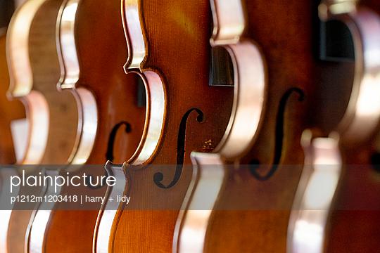Geigen - p1212m1203418 von harry + lidy
