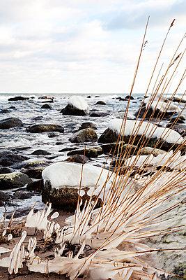 Ostsee, Rügen - p1168m1104639 von Thomas Günther
