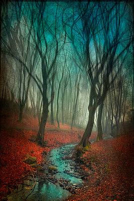 Germany, Wuppertal, stream in autumn forest, manipulated photography - p300m1355838 by Dirk Wüstenhagen