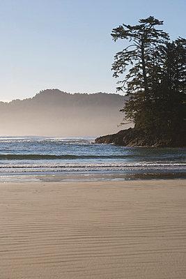 Chesterman's Beach,Tofino, Vancouver Island, British Columbia, Canada - p4426512f by Design Pics