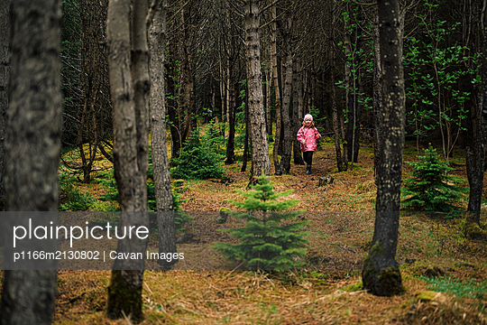 Girl wandering in coniferous tranquil woods - p1166m2130802 by Cavan Images