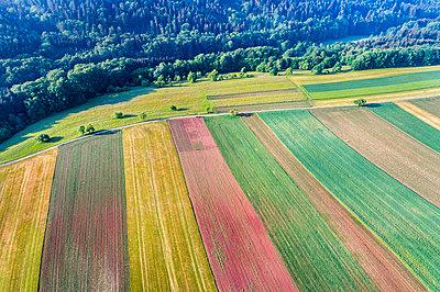 Germany, Baden-Wuerttemberg, Rems-Murr-Kreis, Swabian Franconian forest, Aerial view of fields - p300m1588201 by Stefan Schurr