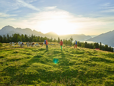 Austria, Tyrol, Mieming Plateau, hikers on alpine meadow with cows at sunrise - p300m1550075 by Christian Vorhofer