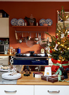 Christmas tree on kitchen worktop and range oven hob - p349m789718 by Brent Darby