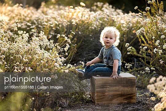 p1166m1555188 von Cavan Images