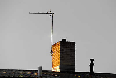 TV aerial on house chimney - p1048m1216142 by Mark Wagner