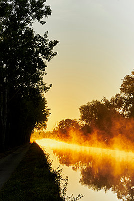 Trees and channel against the light - p1312m2262364 by Axel Killian