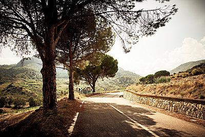 Empty road - p851m2073219 by Lohfink