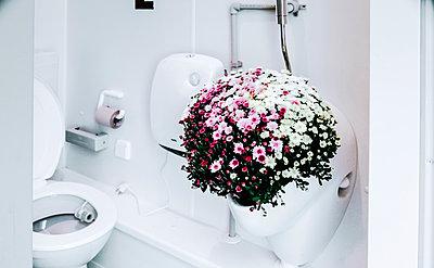 Blumen im Pissoir - p750m908198 von Silveri