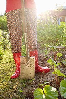 Gartenwelt - p464m1152353 von Elektrons 08