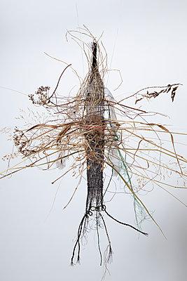 Grasobjekt - p1371m2090213 von virginie perocheau