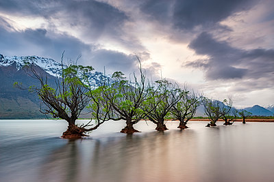 Glenorchy, South Island, New Zealand - p300m2144332 by Scott Masterton