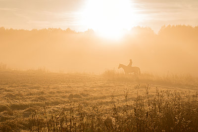 Silhouette of person horseback riding at sunrise - p312m1472065 by Kenneth Bengtsson