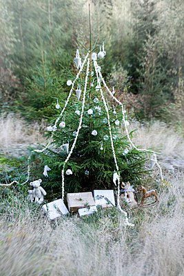 Christmas tree decorated with baubles, garlands and wrapped presents in woodland clearing - p1183m996833 by Annette & Christian AS