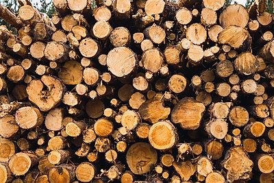 Stack of wood - p300m2060896 von Kike Arnaiz