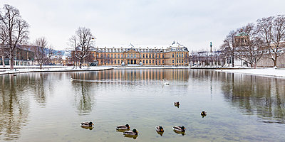 Germany, Baden-Wuerttemberg, Stuttgart, New Palace, Lake Eckensee in winter - p300m1581179 by Werner Dieterich