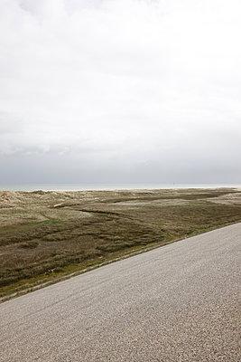 Texel, Westfriesland - p707m1093270 von Sorin Morar