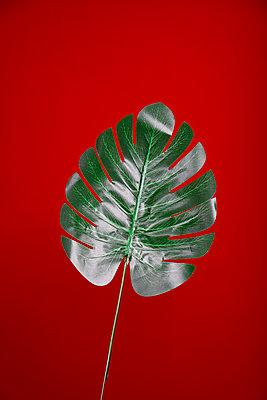 leave - p1043m2278269 by Ralf Grossek
