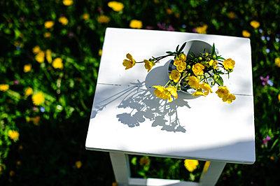 Spring garden. Buttercups - p1412m1516548 by Svetlana Shemeleva