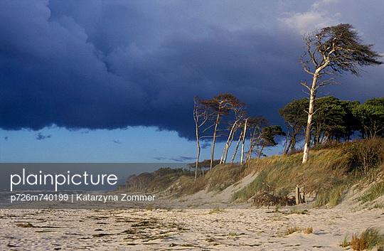 Baltic Sea - p726m740199 by Katarzyna Zommer