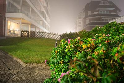 Nachts Uferpromenade Nebel - p267m1165846 von Ingo Kukatz